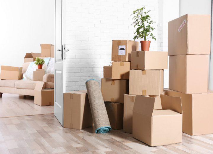 packing boxes sunny coast